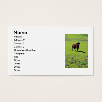 Black Cow Business Card