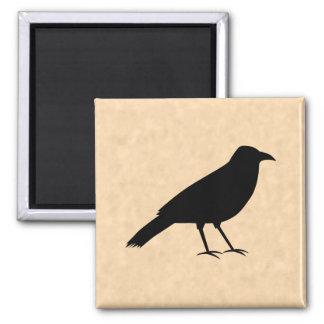 Black Crow Bird on a Parchment Pattern. Magnet