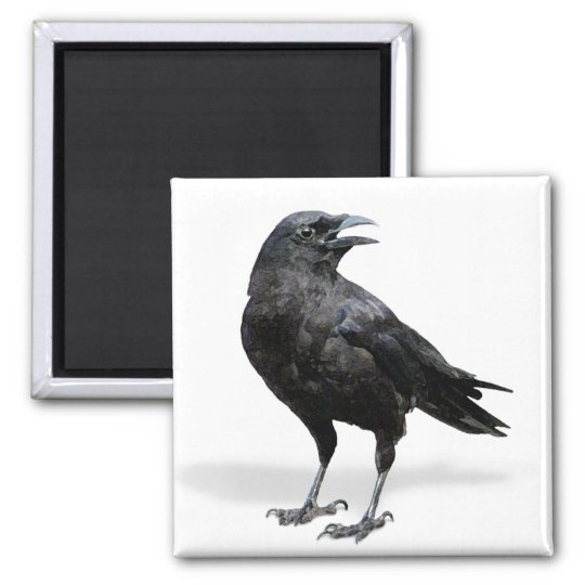 Black Crow Fridge or Office Magnet