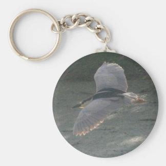 Black-crowned Night-heron 7 Keychain