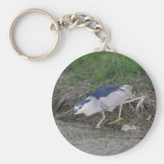 Black-crowned Night-heron hunting Basic Round Button Key Ring