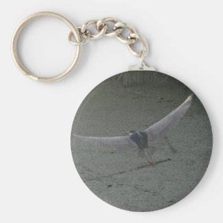 Black-crowned Night-heron Key Chains