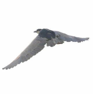 Black-Crowned Night-Heron Keychain Photo Sculpture Key Ring