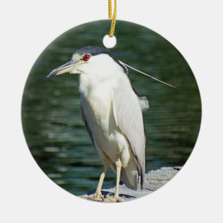 Black Crowned Night Heron Looking For A Meal Christmas Ornament