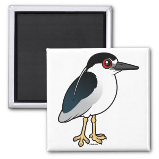 Black-crowned Night Heron Square Magnet