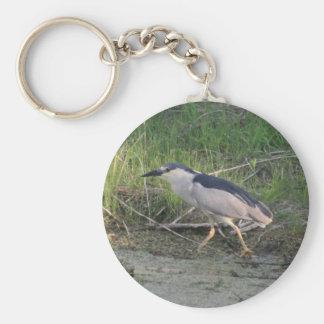 Black-crowned Night-heron walking Keychains