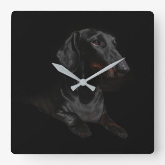 black dachshund square wall clock