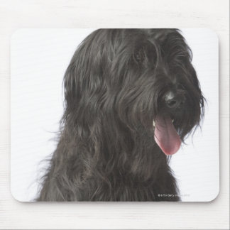Black dog, Briard Mouse Mat