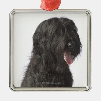 Black dog, Briard Silver-Colored Square Decoration