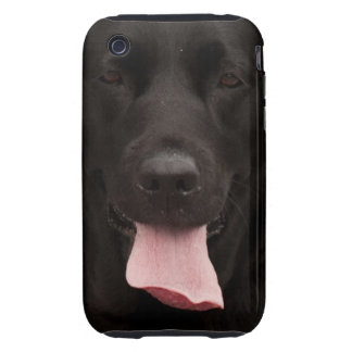 Black dog face tough iPhone 3 cover