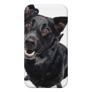Black Dog iPhone 4/4S Cover