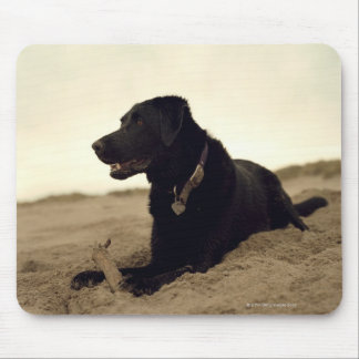 Black dog on sand with stick mouse pad
