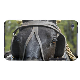 Black Draft Horse iTouch Case iPod Touch Cover