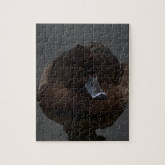 Black duck jigsaw puzzle