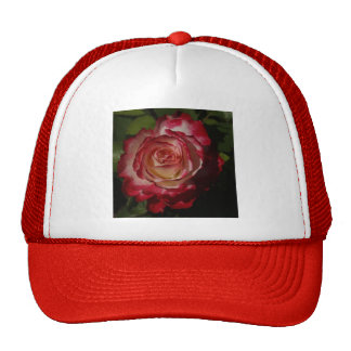 Black-Edged Red Rose Hats