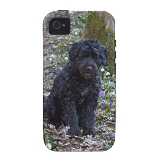 Black English Springer Spaniel Case-Mate iPhone 4 Case