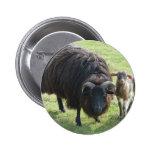Black Ewe 6 Cm Round Badge