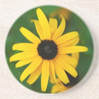 Black eye Susan Coaster