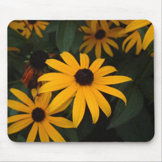 Black Eye Susan mousepad