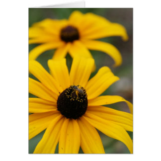 Black-Eyed Susan and Bee Card