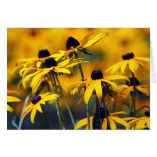 Black eyed Susan Card