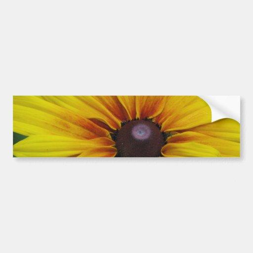 Black Eyed Susan Flower Bumper Sticker