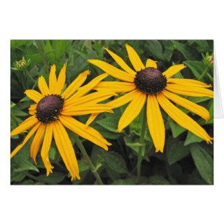 Black Eyed Susan Flower Greeting Card