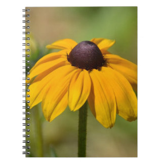 Black Eyed Susan Flower Note Books