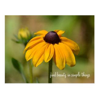 Black Eyed Susan Flower Postcards
