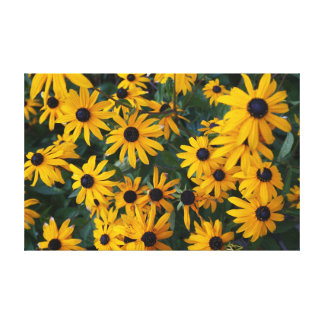 Black-eyed Susan Flowers Canvas