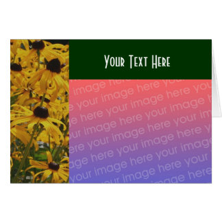 Black Eyed Susan Flowers Photo Card