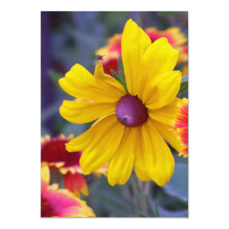 """Black eyed susan flowers plus a fly colorful photo 5"""" x 7"""" invitation card"""