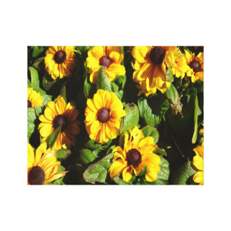 Black Eyed Susan Gallery Wrapped Canvas
