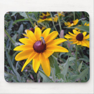 Black-Eyed Susan Mousepad