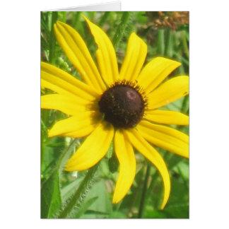 Black-eyed Susan Note Card