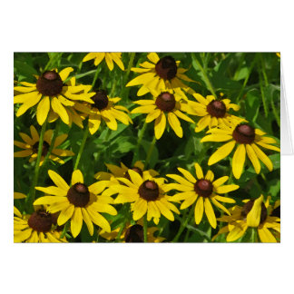 Black-Eyed Susans Art (watercolor) Greeting Card