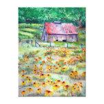 Black-Eyed Susans Barn Wrapped Canvas Print
