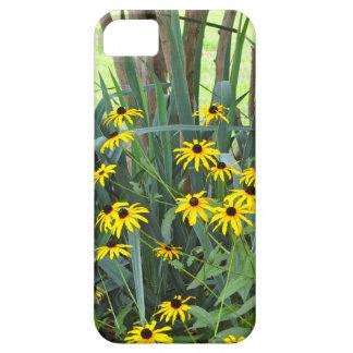 Black Eyed Susans iPhone 5 Cases