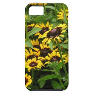 Black Eyed Susans Floral iPhone 5 Case