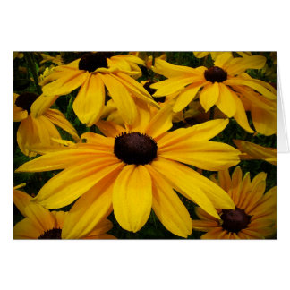 Black-eyed Susans Friendship Greeting Card