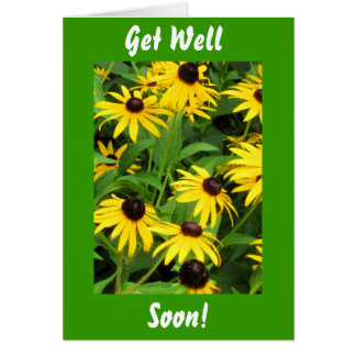 Black Eyed Susans, Get Well, Soon! Greeting Card