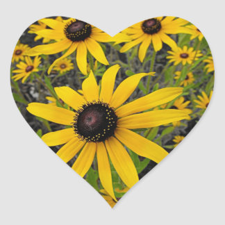 Black Eyed Susans Heart Sticker