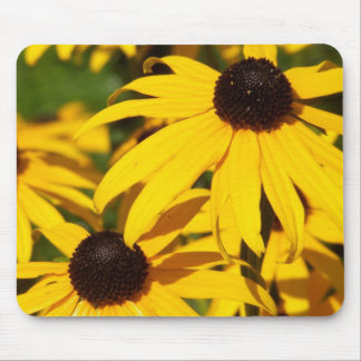 Black-Eyed Susans In Repose Mouse Pad