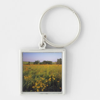 Black eyed Susans in tallgrass prairie at Neil Silver-Colored Square Key Ring