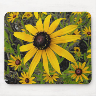 Black Eyed Susans Mouse Mat