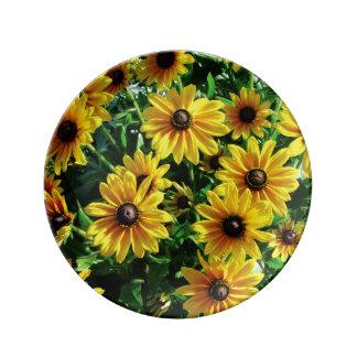 Black Eyed Susans Porcelain Plates