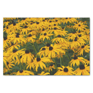 Black Eyed Susans Tissue Paper