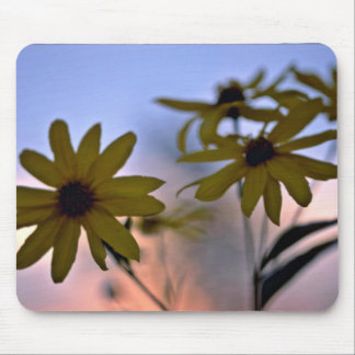 Black-eyed Susans White flowers Mouse Mat