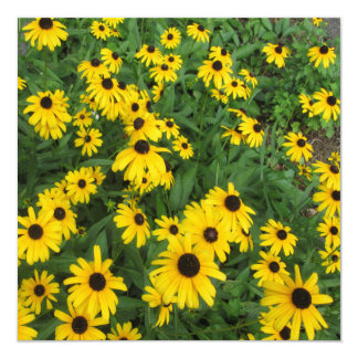 Black Eyed Susans Yellow Green 13 Cm X 13 Cm Square Invitation Card