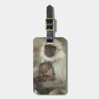 Black-face Langurs, mother with baby, in Luggage Tag